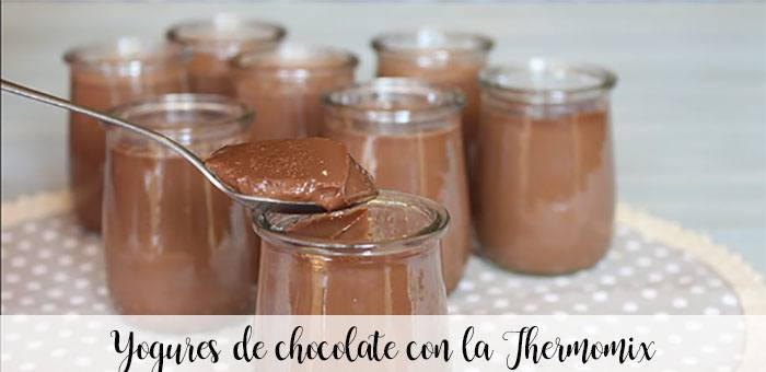 Chocolate yogurts with the Thermomix