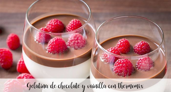 Chocolate and vanilla jelly with thermomix