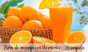 Orange juice with thermomix – Orange