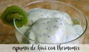 Kiwi foam with thermomix