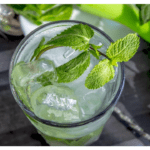 Mojito recipe in the Thermomix