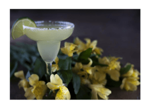 How to make a Margarita cocktail on the Thermomix