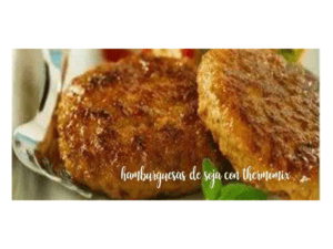 Vegetable soy burgers