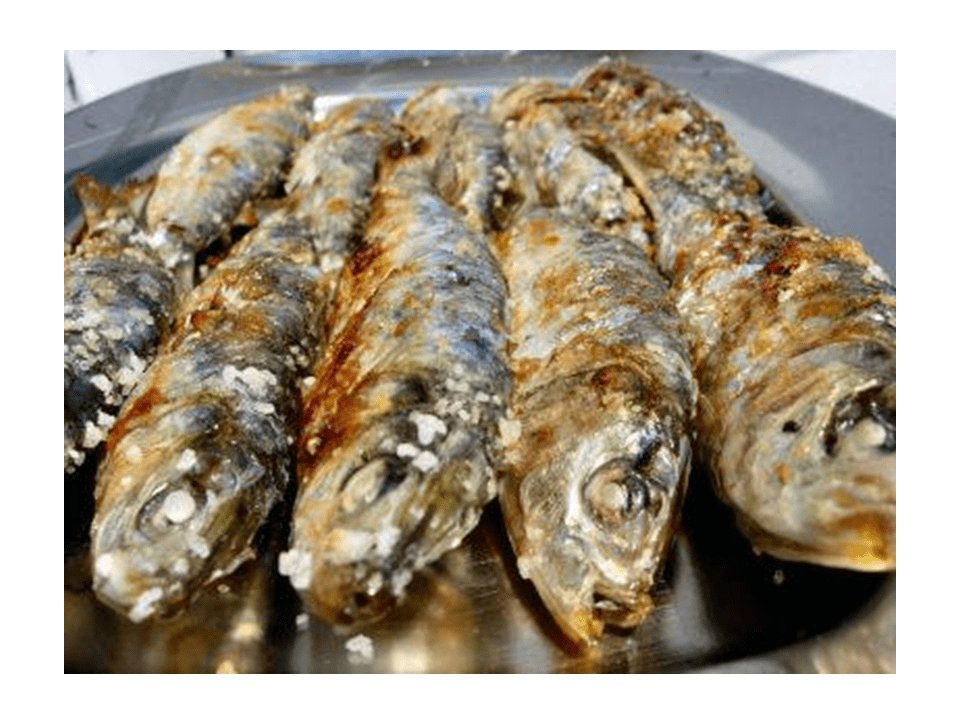 Sardines with salt in the Thermomix