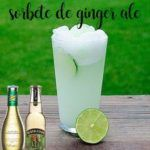 Ginger ale or ginger sorbet with thermomix