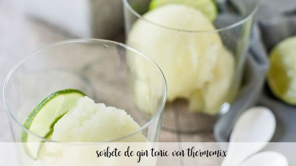 Gin tonic sorbet with thermomix