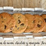 Thermomix oatmeal, chocolate and apple cookies