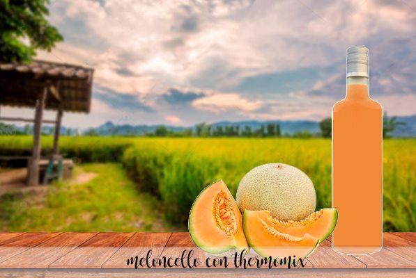 Meloncello - Melon liqueur with Thermomix