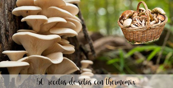 50 mushroom recipes with thermomix